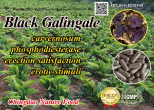 Black Galingale