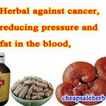 herbal, reducing pressure and fat in blood